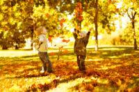 Семинар «Позитивная осень»